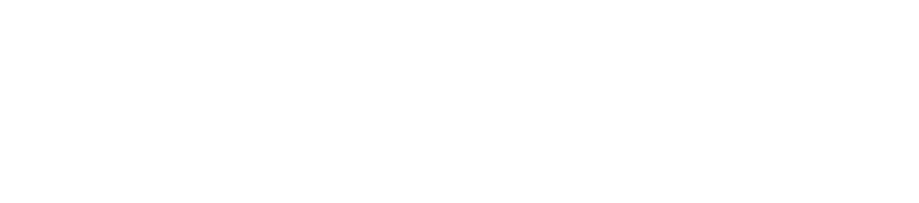 ANIMAGI-CIC-Logo-White